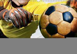 Leidenschaft Fußball (Wandkalender 2019 DIN A3 quer) von Bleicher,  Renate