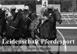 Leidenschaft Pferdesport – Impressionen (Wandkalender 2018 DIN A2 quer) von Stanzer,  Elisabeth