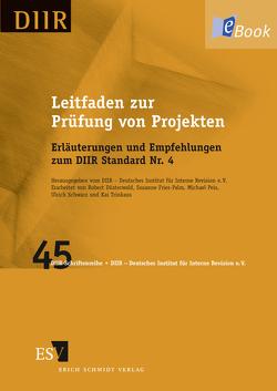 Leitfaden zur Prüfung von Projekten von Düsterwald,  Robert, Fries-Palm,  Susanne, Peis,  Michael, Schwarz,  Ulrich, Trinkaus,  Kai