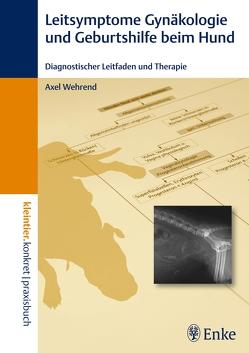 Leitsymptome in der Gynäkologie und Geburtshilfe beim Hund von Wehrend,  Axel