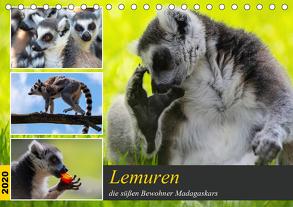 Lemuren die süßen Bewohner Madagaskars (Tischkalender 2020 DIN A5 quer) von Riedel,  Tanja