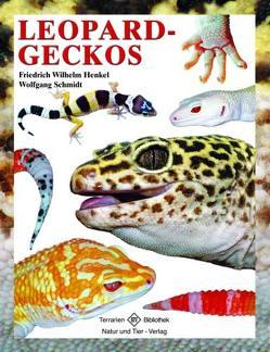 Leopardgeckos von Henkel,  Friedrich Wilhelm, Schmidt,  Wolfgang