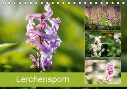 Lerchensporn (Tischkalender 2019 DIN A5 quer) von Rasche,  Marlen