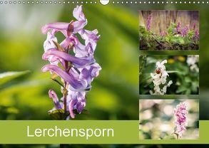Lerchensporn (Wandkalender 2018 DIN A3 quer) von Rasche,  Marlen