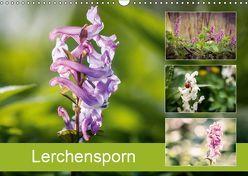 Lerchensporn (Wandkalender 2019 DIN A3 quer) von Rasche,  Marlen