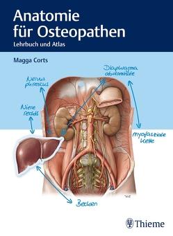 Anatomie für Osteopathen von Corts,  Magga