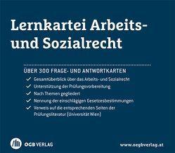 Lernkartei Arbeits- und Sozialrecht von Dullinger,  Thomas, Trinko,  Michael