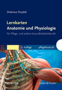 Lernkarten Anatomie und Physiologie von Porjalali,  Shahrouz