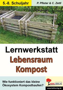 Lernwerkstatt Lebensraum Kompost von Pfister,  Petra, Zettl,  Christiane