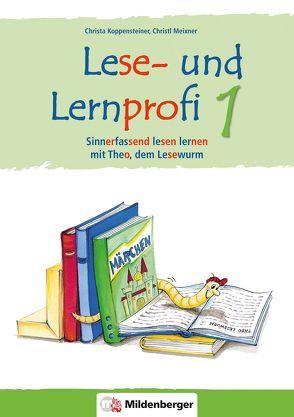 Lese- und Lernprofi 1 – Schülerarbeitsheft – silbierte Ausgabe von Koppensteiner,  Christa, Lottermoser,  Elisabeth, Meixner,  Christl