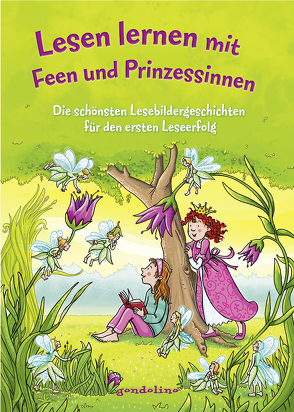 Lesen lernen mit Feen und Prinzessinnen von BATO, Färber,  Werner, Ginsbach,  Julia, Raudies,  Christine, Reider,  Katja, Schliehe,  Karin, Theissen,  Petra