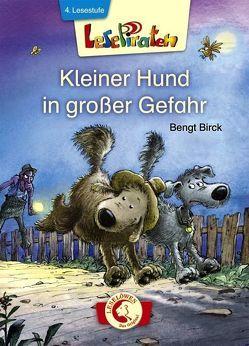 Lesepiraten – Kleiner Hund in großer Gefahr von Birck,  Bengt, Birck,  Jan