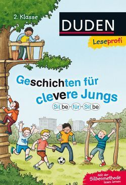 Leseprofi ─ Silbe für Silbe: Geschichten für clevere Jungs, 2. Klasse von Bux,  Alexander, Napp,  Daniel, Obrecht,  Bettina, Stehr,  Sabine