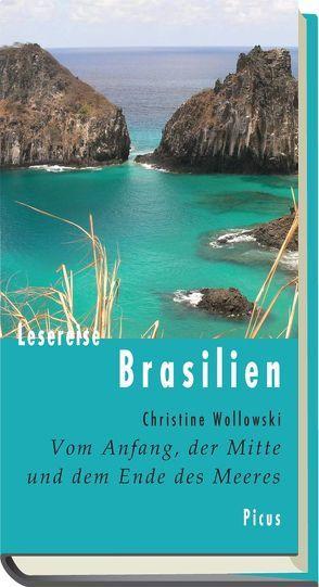 Lesereise Brasilien. von Wollowski,  Christine