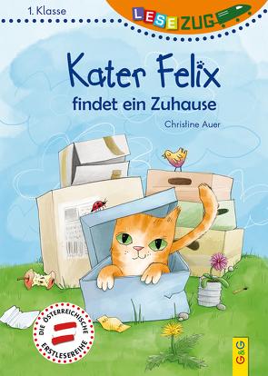 LESEZUG/1. Klasse: Kater Felix findet ein Zuhause von Auer,  Christine, Nowothnig,  Kristina