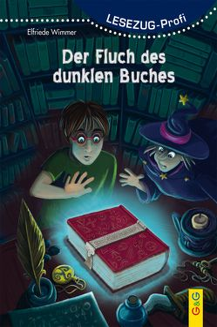LESEZUG/ Profi: Der Fluch des dunklen Buches von Herberger,  Petra, Wimmer,  Elfriede