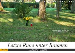 Letzte Ruhe unter Bäumen, Trost in Wort und Bild (Wandkalender 2019 DIN A4 quer) von Marten,  Martina