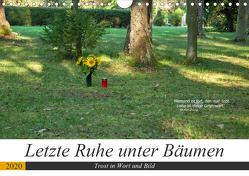 Letzte Ruhe unter Bäumen, Trost in Wort und Bild (Wandkalender 2020 DIN A4 quer) von Marten,  Martina