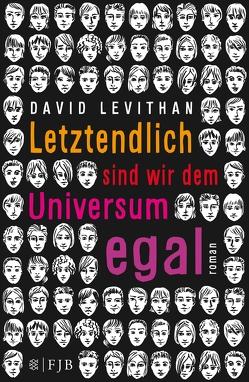 Letztendlich sind wir dem Universum egal von Levithan,  David, Tichy,  Martina