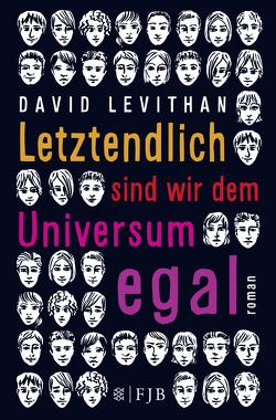 Letztendlich sind wir dem Universum egal von Levithan,  David