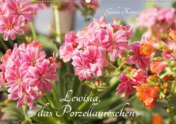 Lewisia, das Porzellanröschen (Wandkalender 2021 DIN A2 quer) von Kruse,  Gisela