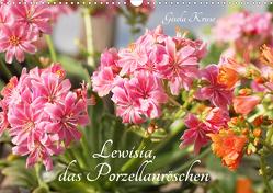 Lewisia, das Porzellanröschen (Wandkalender 2021 DIN A3 quer) von Kruse,  Gisela