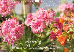 Lewisia, das Porzellanröschen (Wandkalender 2021 DIN A4 quer) von Kruse,  Gisela