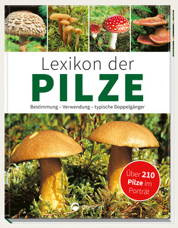 Lexikon der Pilze – Bestimmung, Verwendung, typische Doppelgänger von Kothe,  Hans W.