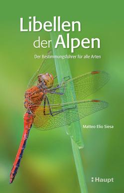 Libellen der Alpen von Siesa,  Matteo Elio