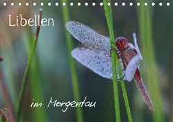 Libellen im Morgentau (Tischkalender 2018 DIN A5 quer) von Brix - Studio Brix,  Matthias