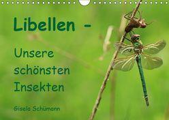 Libellen – Unsere schönsten Insekten (Wandkalender 2019 DIN A4 quer) von Schuemann,  Gisela
