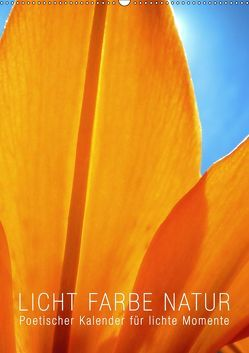 Licht Farbe Natur (Wandkalender 2019 DIN A2 hoch) von bilwissedition.com Layout: Babette Reek,  Bilder: