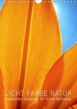 Licht Farbe Natur (Wandkalender 2019 DIN A4 hoch) von bilwissedition.com Layout: Babette Reek,  Bilder: