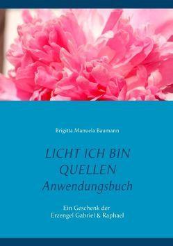 Licht ich bin Quellen – Das Anwendungsbuch von Baumann,  Brigitta Manuela