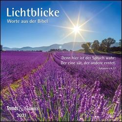Lichtblicke 2021 – Broschürenkalender – Wandkalender – mit herausnehmbarem Poster und Bibelzitaten – Format 30 x 30 cm