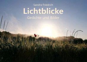 Lichtblicke von Friedrich,  Sandra
