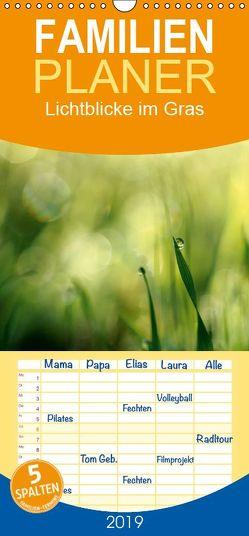 Lichtblicke im Gras – Familienplaner hoch (Wandkalender 2019 , 21 cm x 45 cm, hoch) von Schneider,  Rosina