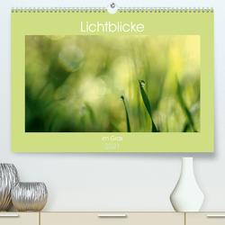 Lichtblicke im Gras (Premium, hochwertiger DIN A2 Wandkalender 2021, Kunstdruck in Hochglanz) von Schneider,  Rosina