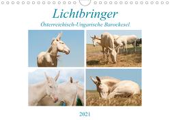 Lichtbringer – Österreichisch-Ungarische Barockesel (Wandkalender 2021 DIN A4 quer) von Bölts,  Meike