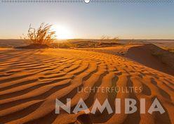 Lichterfülltes Namibia (Wandkalender 2019 DIN A2 quer) von Peyer,  Stephan
