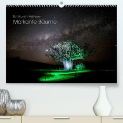 Lichtkunst – Weltreise Markante Bäume (Premium, hochwertiger DIN A2 Wandkalender 2021, Kunstdruck in Hochglanz) von Heilmann,  Gunnar