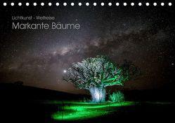 Lichtkunst – Weltreise Markante Bäume (Tischkalender 2019 DIN A5 quer) von Heilmann,  Gunnar