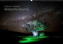 Lichtkunst – Weltreise Markante Bäume (Wandkalender 2019 DIN A2 quer) von Heilmann,  Gunnar