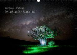 Lichtkunst – Weltreise Markante Bäume (Wandkalender 2019 DIN A3 quer) von Heilmann,  Gunnar