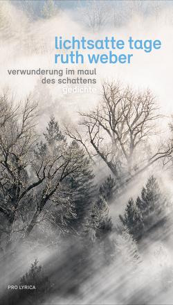 Lichtsatte Tage – Verwunderung im Maul des Schattens von Weber,  Ruth