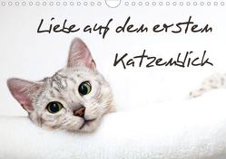 Liebe auf den ersten Katzenblick (Wandkalender 2020 DIN A4 quer) von Enderlein - Bethari Bengals,  Sylke