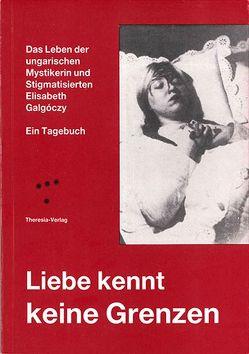 Liebe kennt keine Grenzen von Galgóczy,  Elisabeth