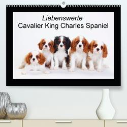 Liebenswerte Cavalier King Charles Spaniel (Premium, hochwertiger DIN A2 Wandkalender 2020, Kunstdruck in Hochglanz) von Wegner,  Petra