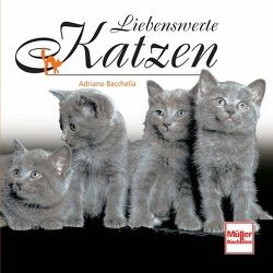 Liebenswerte Katzen von Baccella,  Adriano
