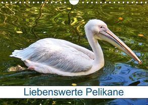 Liebenswerte Pelikane (Wandkalender 2018 DIN A4 quer) von kattobello